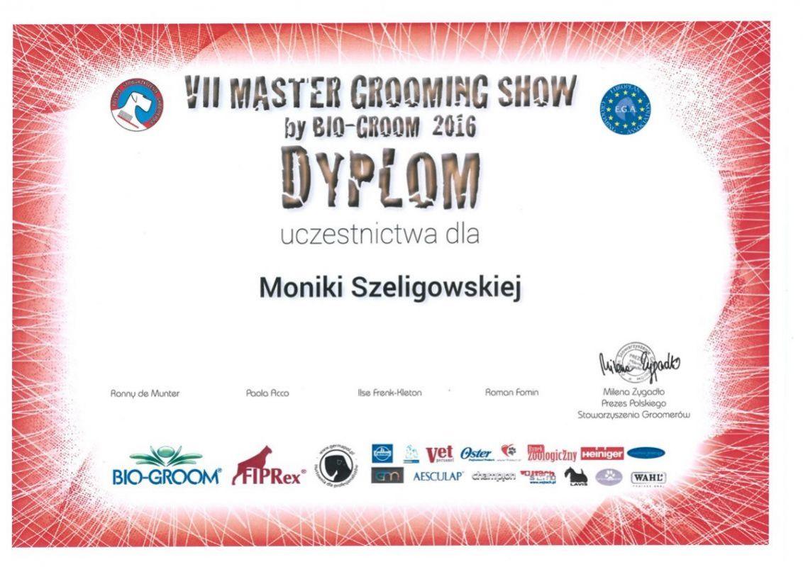 VII Master Grooming Show by Bio-Groom 2016 - dyplom dla Moniki Szeligowskiej