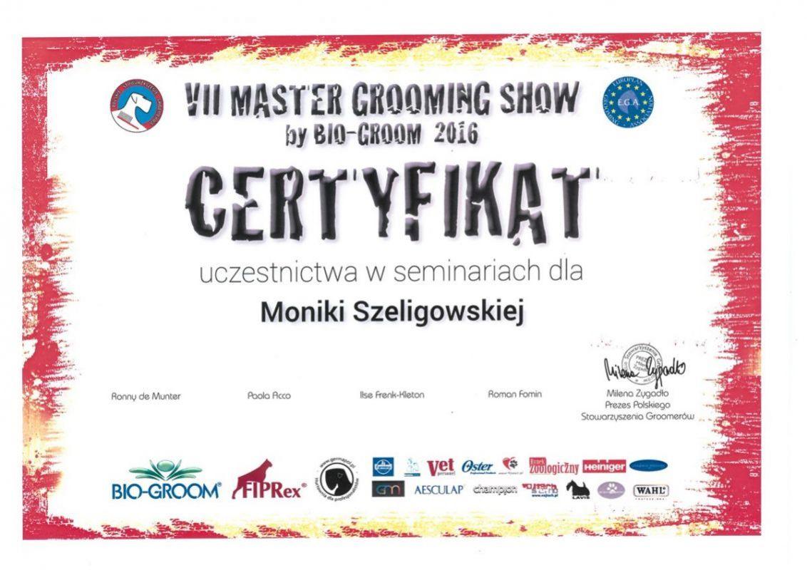 VII Master Grooming Show by Bio-Groom 2016 - certyfikat dla Moniki Szeligowskiej